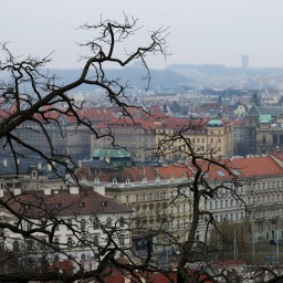 Prague – In the City